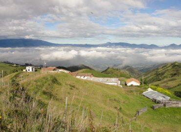 Hacienda Teresita